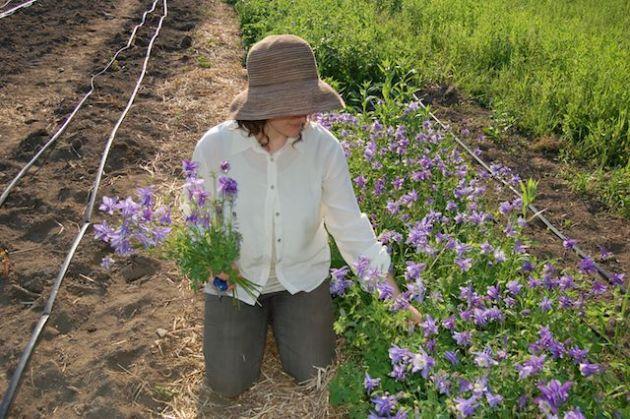 floralia farm