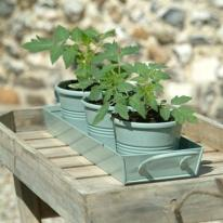 6. Herb pots (set of three)