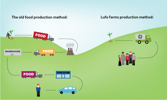 lufa-farms-food-process-diagram