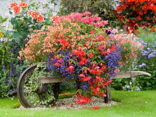 containter wheelbarrow