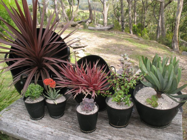 recycled-tire-pots