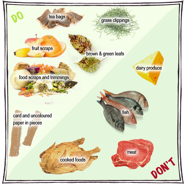 Dos And Donts Of Food For Dogs