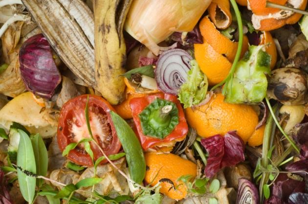 organic waste