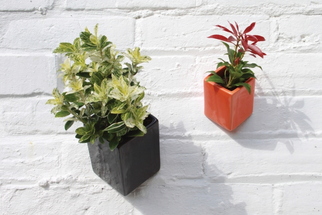 thelermont-hupton--off-the-wall-pots--small-and-large--72-rgb